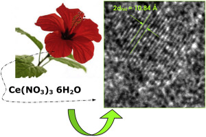 Nanoparticles Green Synthesis By Hibiscus Sabdariffa Flower Extract