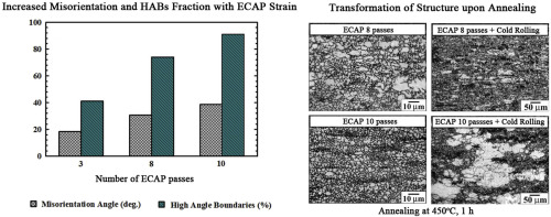 Microstructural evolution in Al–Mg–Sc–Zr alloy during severe