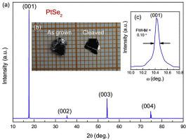 Single crystal growth of PtSe2 via CuSe flux method and its