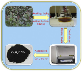 Green Synthesis Of 3d Hierarchical Nanostructured Co3o4 Carbon