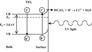 Synthesis of rutile TiO2 nanowires by thermal oxidation of