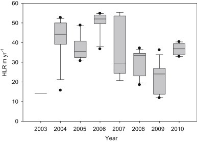 Nitrogen dynamics of a large-scale constructed wetland used to