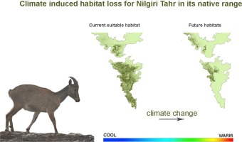 Niche models inform the effects of climate change on the endangered
