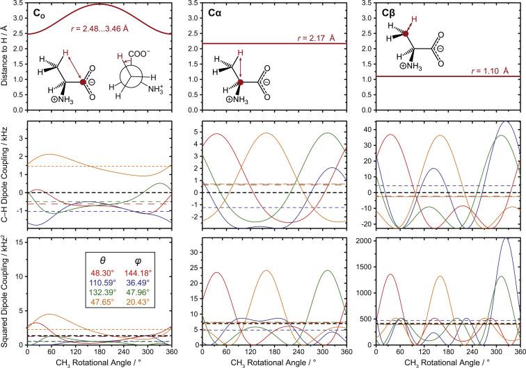 Methyl dynamics in amino acids modulate heteronuclear cross