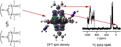 NMR chemical shifts of urea loaded copper benzoate  A joint solid