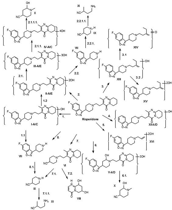 Photocatalytic Transformation Of The Antipsychotic Drug Risperidone