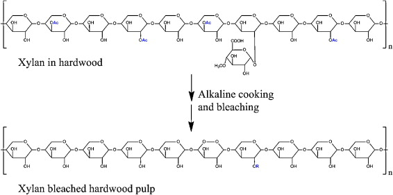 Hydroxyalkylated xylans – Their synthesis and application in