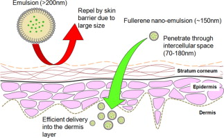Comparison Of Box Behnken And Central Composite Designs In Optimization Of Fullerene Loaded Palm Based Nano Emulsions For Cosmeceutical Application Sciencedirect