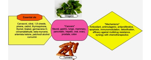 Tapping Botanicals For Essential Oils Progress And Hurdles In Cancer Mitigation Sciencedirect
