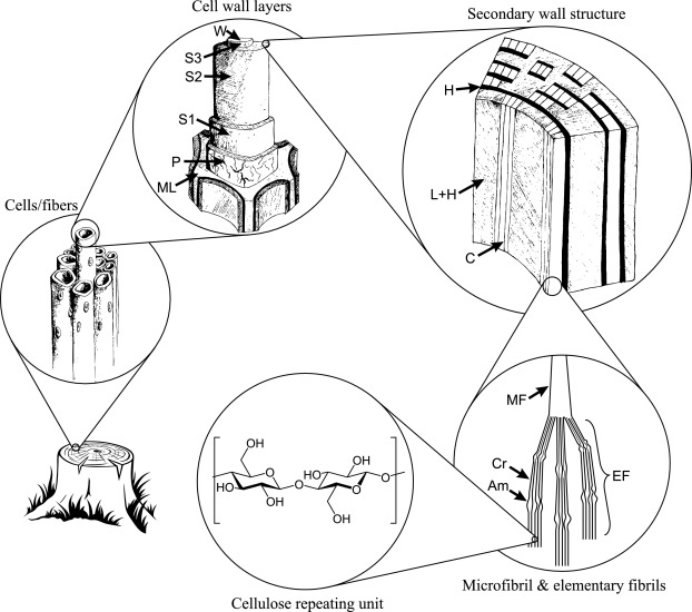 Production Of Cellulose Nanofibrils A Review Of Recent Advances