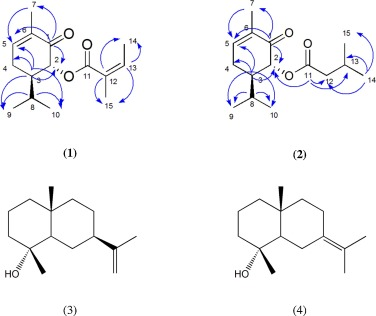 Composition And Bioactivity Of Pluchea Carolinensis Jack