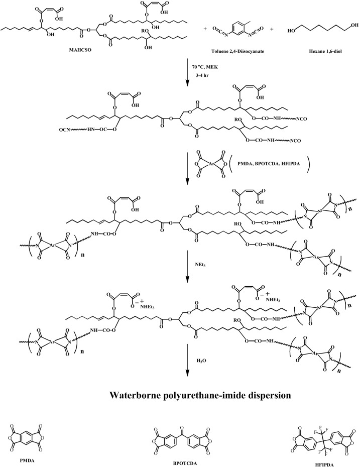 Anionic Waterborne Polyurethane Imide Dispersions From Cottonseed