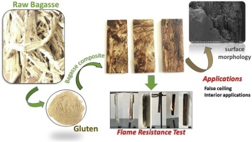 Valorization of sugarcane bagasse by developing completely
