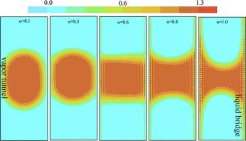 Molecular dynamics simulation of wetting and interfacial