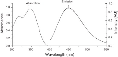 Steady state and time-resolved fluorescence spectroscopy of