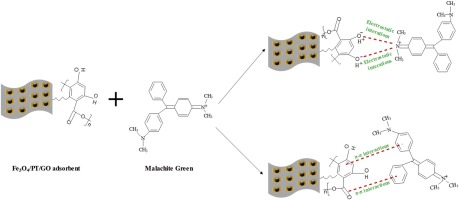 Novel magnetic graphene oxide decorated with persimmon tannins for