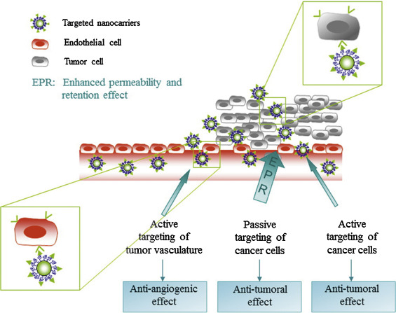 Strategies of polymeric nanoparticles for enhanced