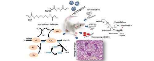 Biocompatibility evaluation of pH and glutathione-responsive