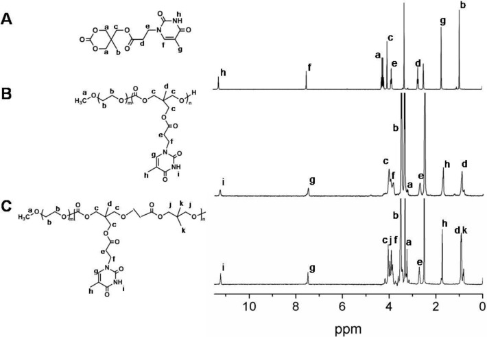 Thymine-functionalized amphiphilic biodegradable copolymers for high