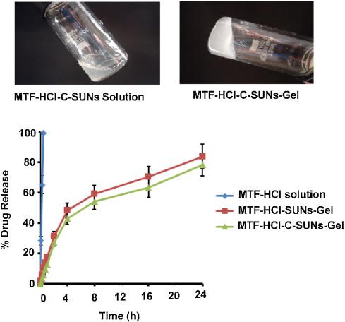 intravaginal administration of metformin hydrochloride loaded