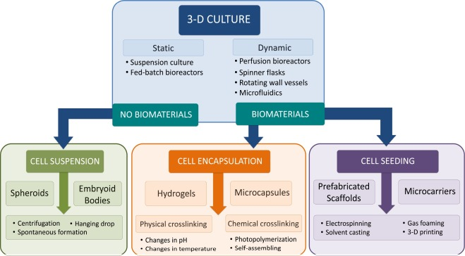 Advances and challenges in stem cell culture - ScienceDirect