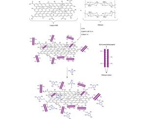 Development of a graphene oxide/chitosan nanocomposite for