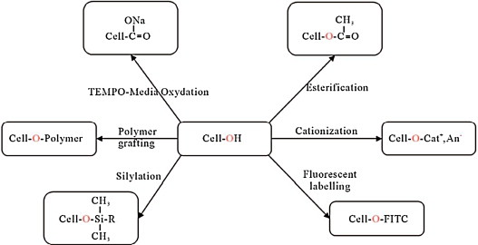 Processing of nanostructured polymers and advanced polymeric based
