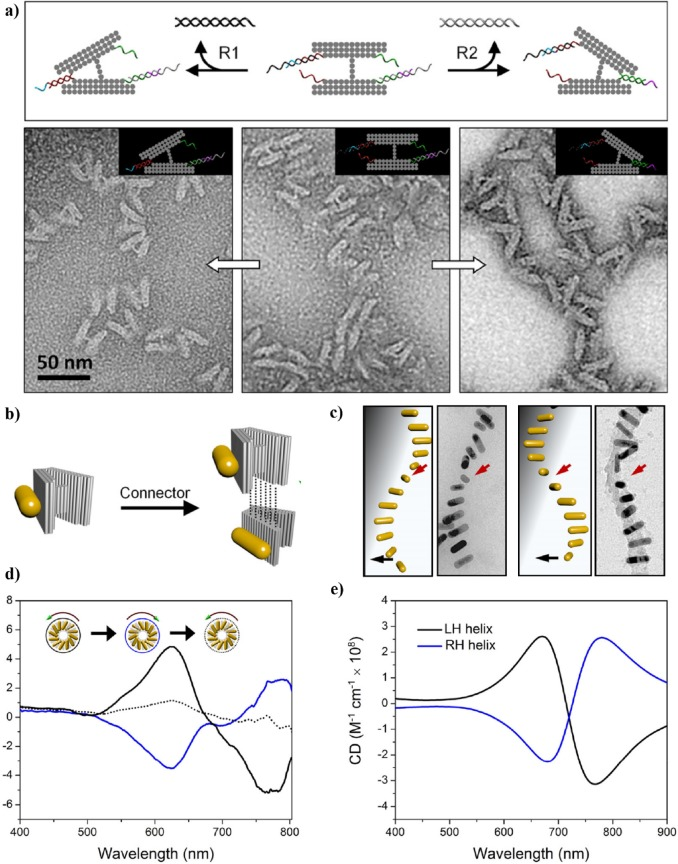 The Path Towards Functional Nanoparticle DNA Origami
