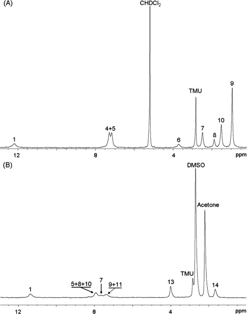 NMR spectrometry isotopic fingerprinting: A tool for the
