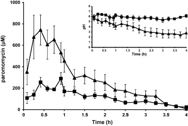 Gastrointestinal transfer in vivo evaluation and implementation mean paromomycin concentrationtime profiles and ph profiles in the antrum ccuart Images