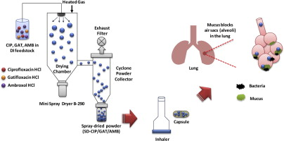 A novel inhaled multi-pronged attack against respiratory