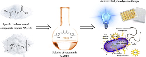 Characterization And Antimicrobial Phototoxicity Of Curcumin Dissolved In Natural Deep Eutectic Solvents Sciencedirect