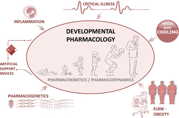 Non maturational covariates for dynamic systems pharmacology models illustrations on non maturational covariates explored in neonatal andor pediatric intensive care patients malvernweather Images