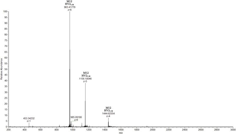 Evaluating prodrug characteristics of a novel anticoagulant