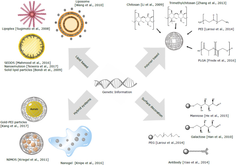 Oral delivery of non-viral nucleic acid-based therapeutics