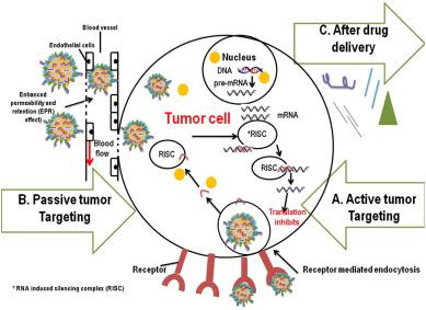 cáncer de próstata docetaxelada