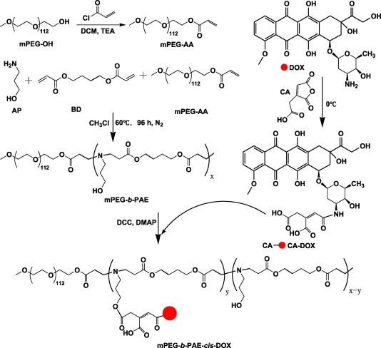 A Ph Responsive Prodrug Delivery System Self Assembled From Acid Labile Doxorubicin Conjugated Amphiphilic Ph Sensitive Block Copolymers Sciencedirect