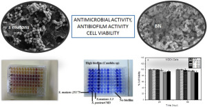 Effects of hexagonal boron nitride nanoparticles on