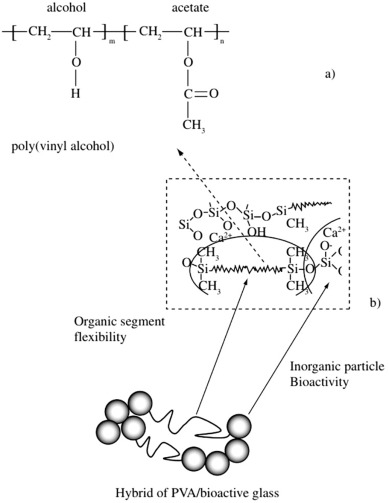 Chitosan Based Polymerbioglass Composites For Tissue Engineering