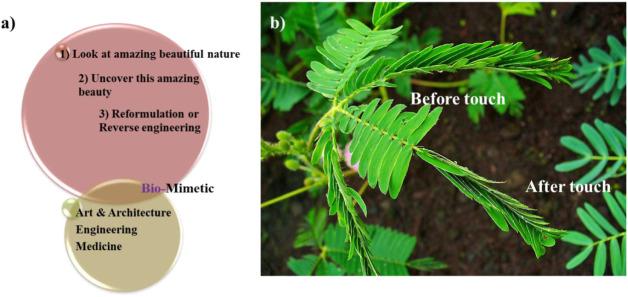 Recent exploration of bio-mimetic nanomaterial for potential