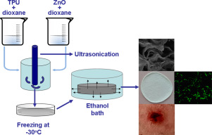 Nanocomposite foams based on flexible biobased thermoplastic