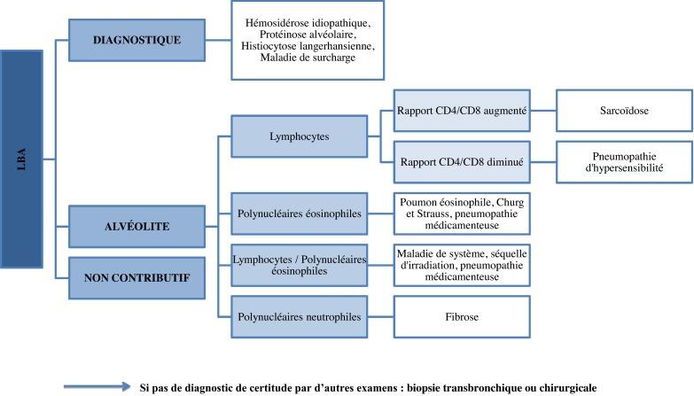 Pneumopathies infiltrantes diffuses chroniques de l'enfant ...