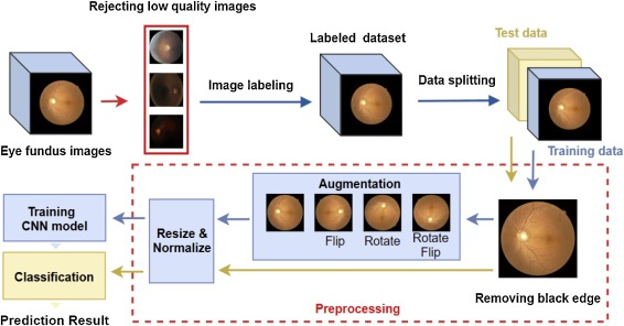 Referable Diabetic Retinopathy Identification from Eye Fundus Images