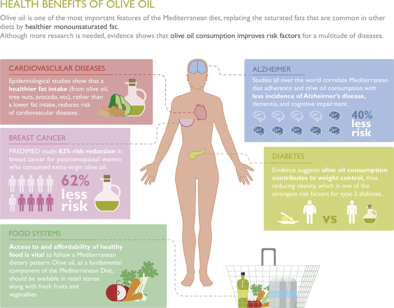 importance of fat and oil in human diet