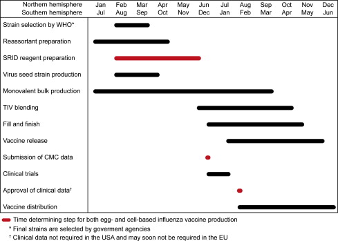 Current And Next Generation Influenza Vaccines Formulation And Production Strategies Sciencedirect