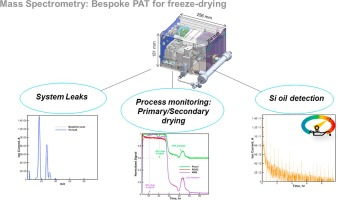 Mass spectrometry in freeze-drying: Motivations for using a bespoke
