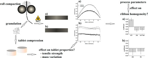 How Relevant Is Ribbon Homogeneity In Roll Compactiondry