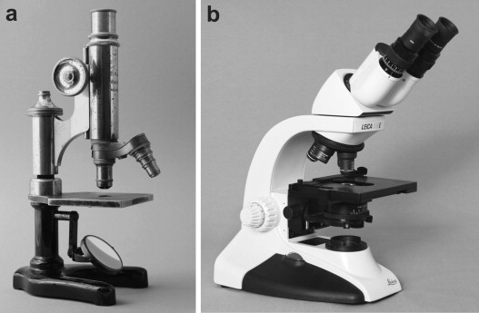 Virtual Microscopythe Future Of Teaching Histology In The Medical