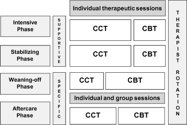 Therapeutic alliance and multiple psychotherapy in the