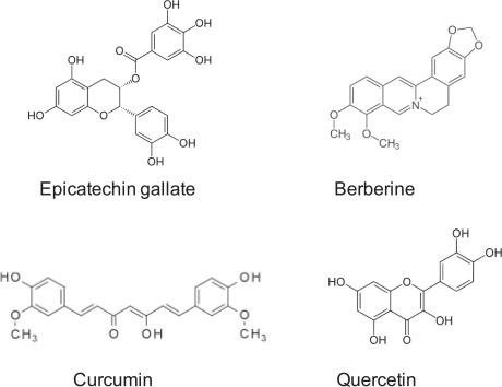 prostatitis de curcumina y quercetina